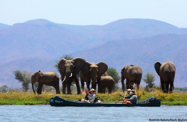 I:\Zimbabwe\Bushlife Safaris\Vundu Camp - Dec 2014 Images\IMG_0689-3.jpg