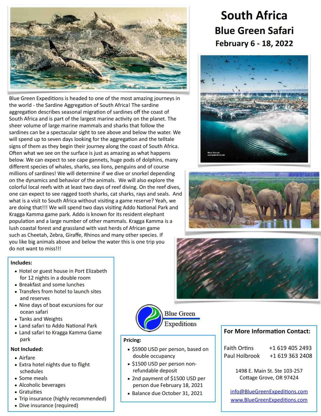South Africa Sardine Run Expedition, February 6 - 18, 2022. Expedition description and pricing. PDF flyer contains the same information.